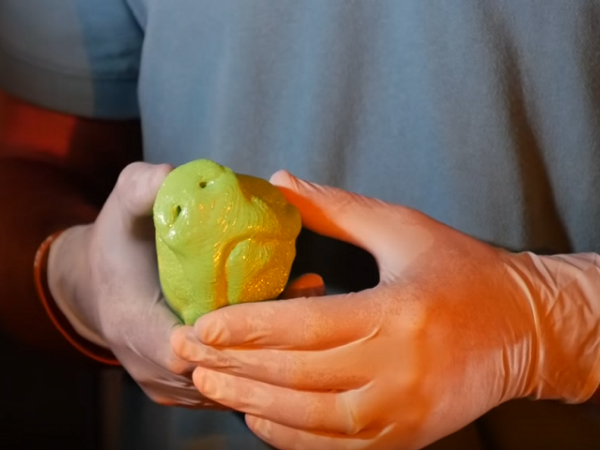 3D printed dog nose