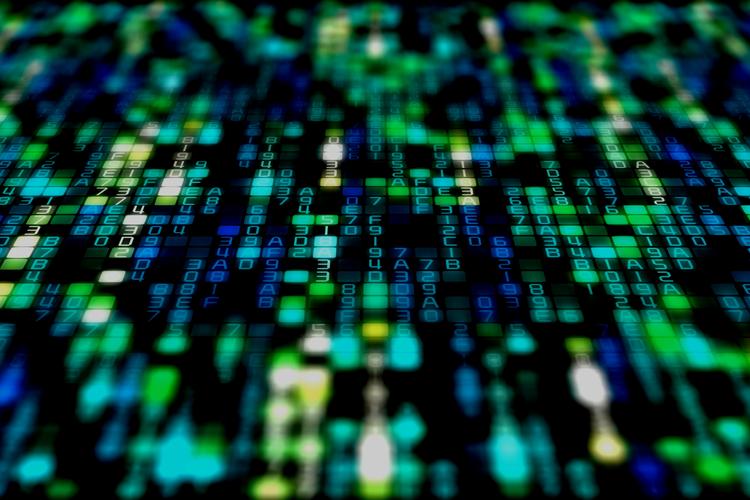 CATALOG DNA